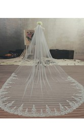 Ethereal Style Cathedral Tulle Wedding Veil with Lace Edge