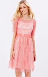 Short Half Sleeve Ribboned Scoop Neck Lace Bridesmaid Dress