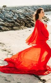 Sheath Poet Long Sleeve Empire Maternity Dress