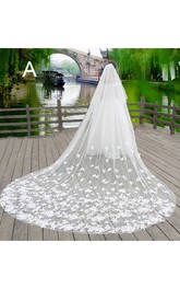 New Korean Style Lace Applique Large Tailed Tulle Super Long Veil