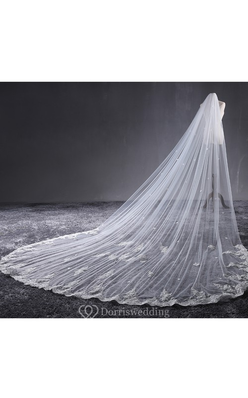 Ethereal Tulle Cathedral Wedding Veil with Lace Edge and Flower Appliques